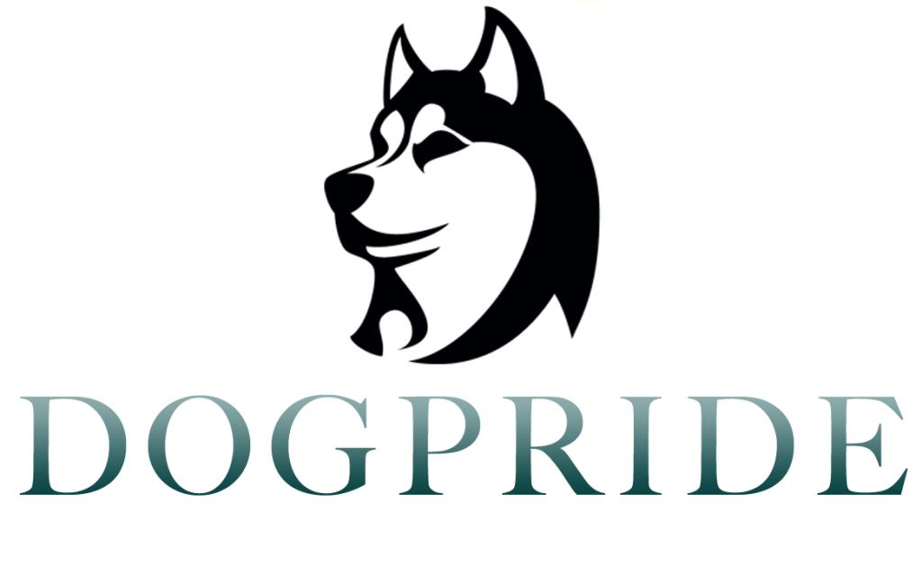 DogPride франшиза отзывы