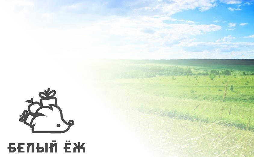 Логотип интернет-магазина белый ёж