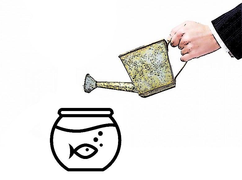 Какие нужны инвестиции для рыбного магазина