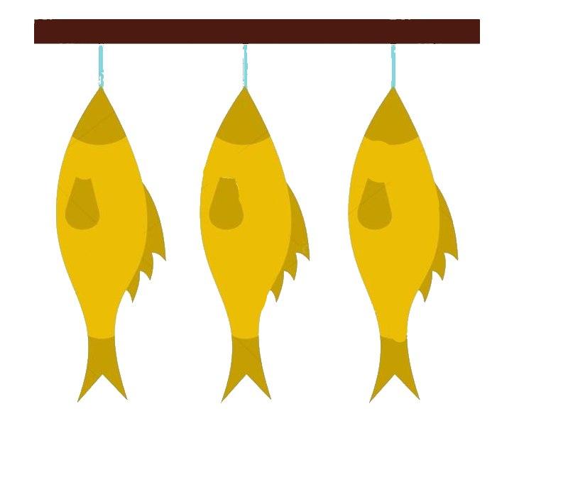 Какая рыбна нужна в магазине