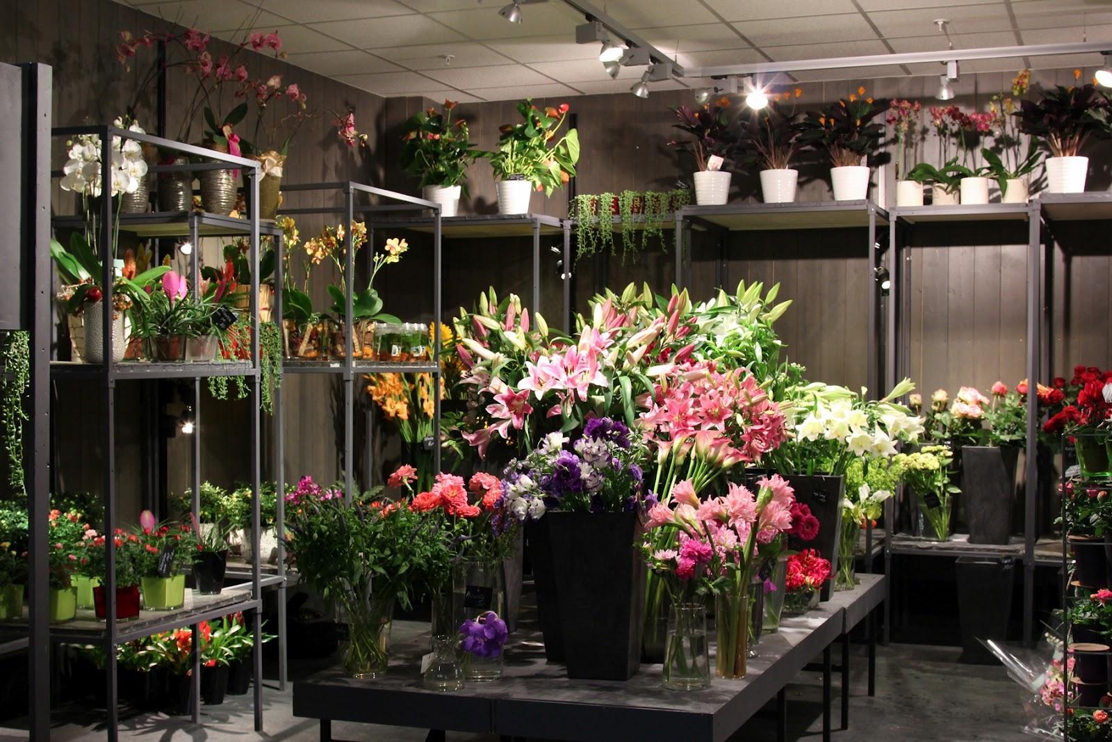 Планта-а магазин цветов, европейский