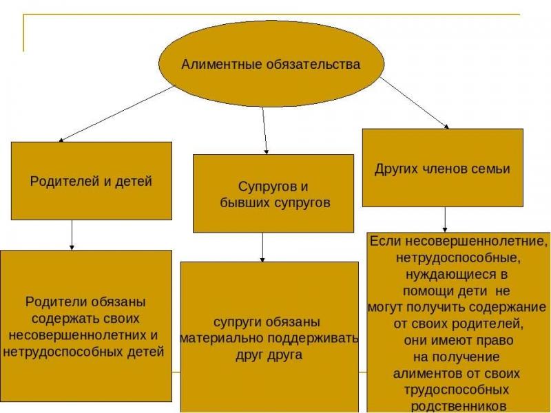 alimentnye objazatelstva rodstvennikov i chlenov semi 35bb5f2