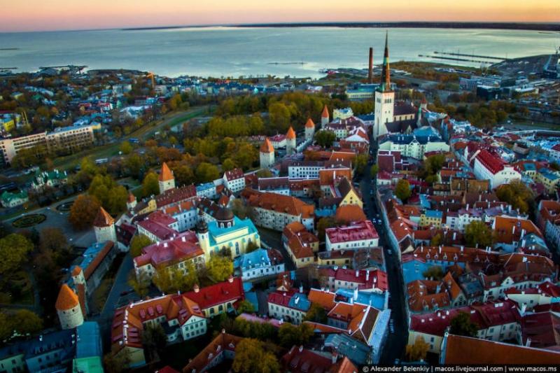 biznes v estonii dlja russkih kak otkryt i zaregistrirovat firmu 07dc993
