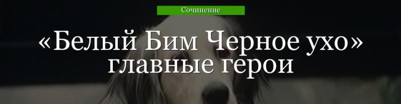 harakteristika ivana ivanovicha v povesti belyj bim chernoe uho opisanie hozjaina bima 3bb71c7
