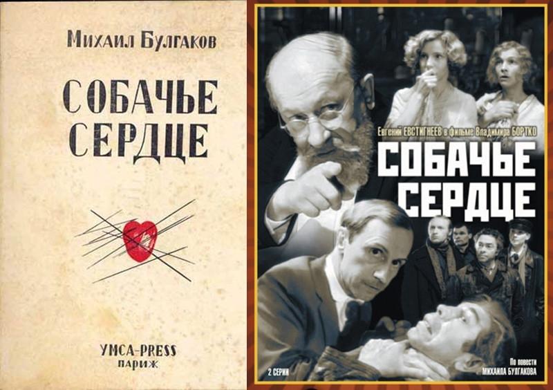 illjustracii k povesti sobache serdce bulgakova kadry iz filma 1988 goda 73ca80e