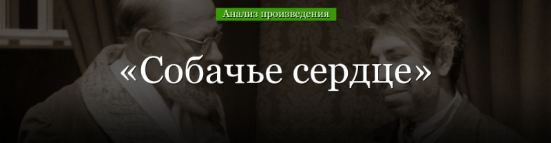 kritika o povesti sobache serdce bulgakova otzyvy analiz suti smysl i ideja 70adf62