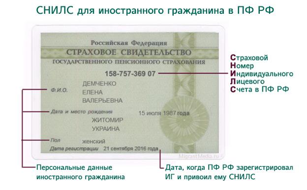 oformlenie snils dokumenty dlja poluchenija snils f430b41
