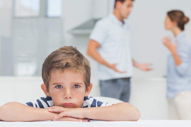 procedura lishenija otca roditelskih prav 592a687