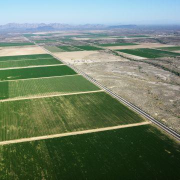 prodazha doli zemelnogo uchastka sh naznachenija i zemel drugih kategorij 2c6a0b1